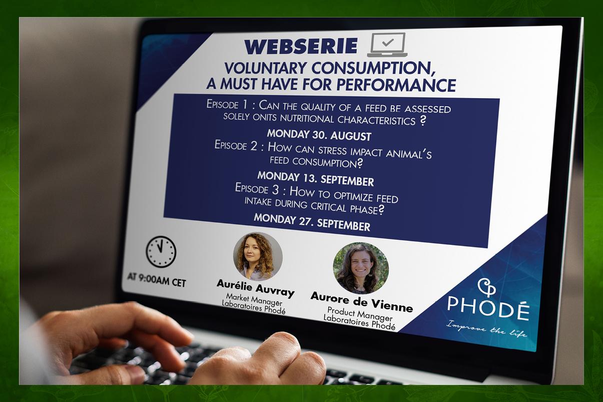 Invitation à une web série